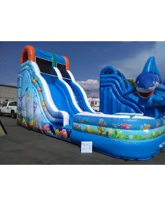 18' Wave Fish Wet/Dry Slide - 18398