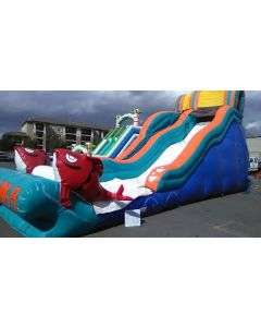 19' Big Kahuna Wet/Dry Slide - 17356